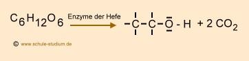 Alkoholische Gärung Chemie